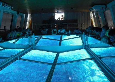Key West Glass Bottom Boat observation floor