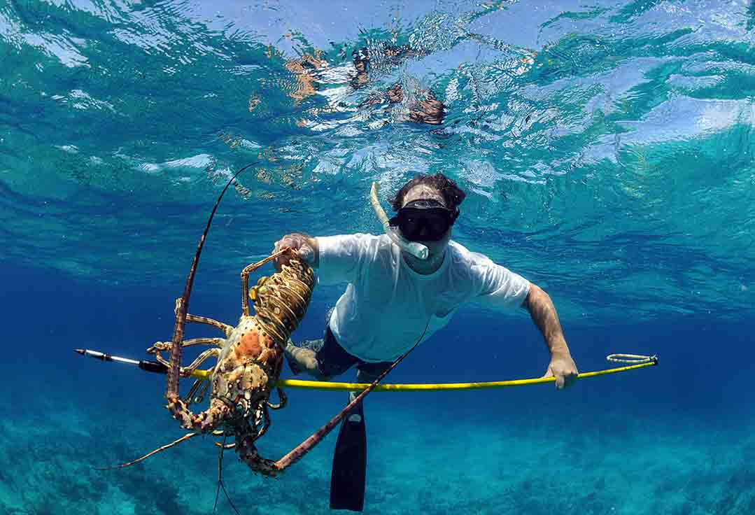 man Lobstering with Key West Fishing Charters