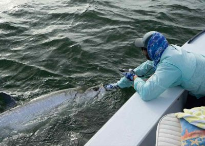 man boats a big tarpon with key west fishing charters