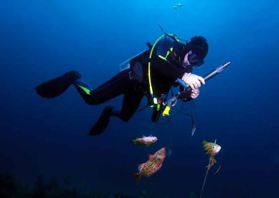 man scubas with key west Spearfishing