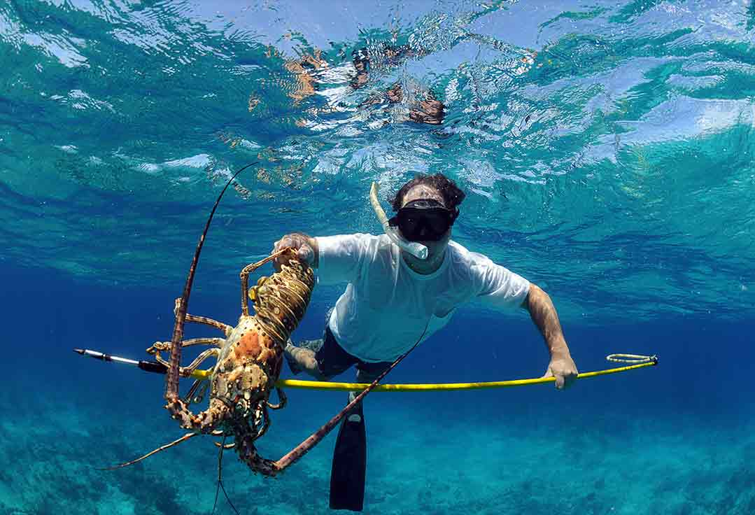 Lobstering during a Key West snorkeling trip.